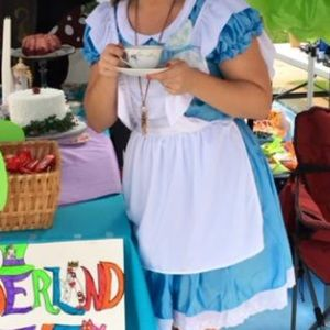 california costumes Other - Alice in wonderland costume
